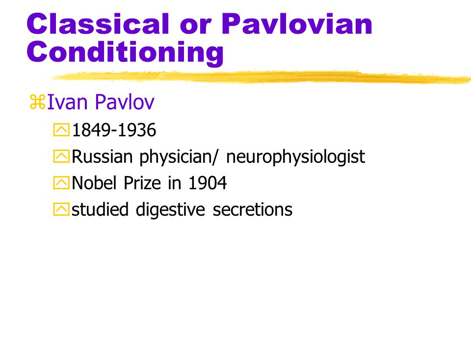 Classical or Pavlovian Conditioning zIvan Pavlov y1849-1936 yRussian physician/ neurophysiologist yNobel Prize in 1904 ystudied digestive secretions
