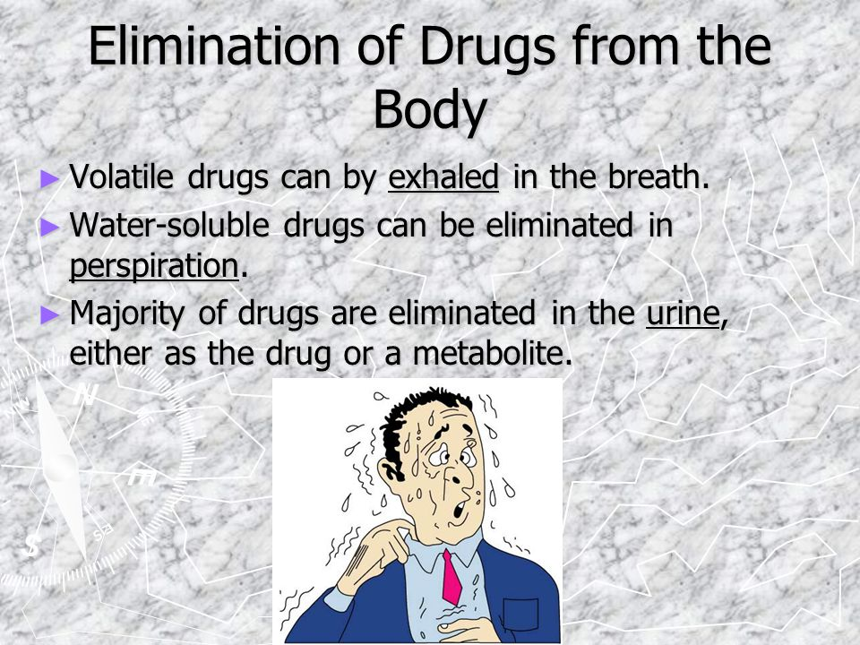 Elimination of Drugs from the Body ► Volatile drugs can by exhaled in the breath.