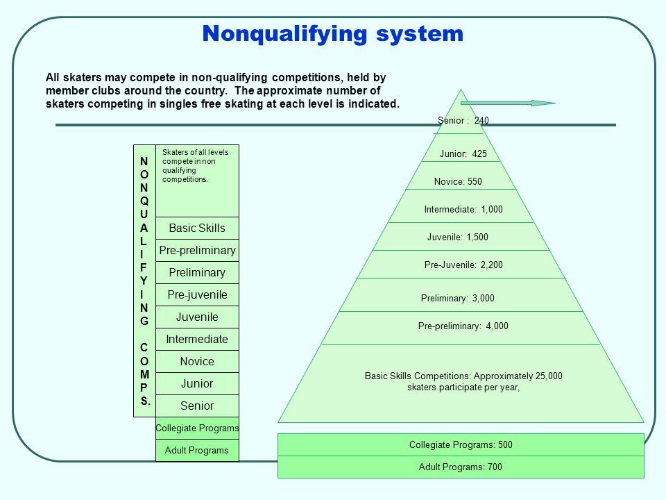 Nonqualifying system N O N Q U A L I F Y I N G C O M P S.