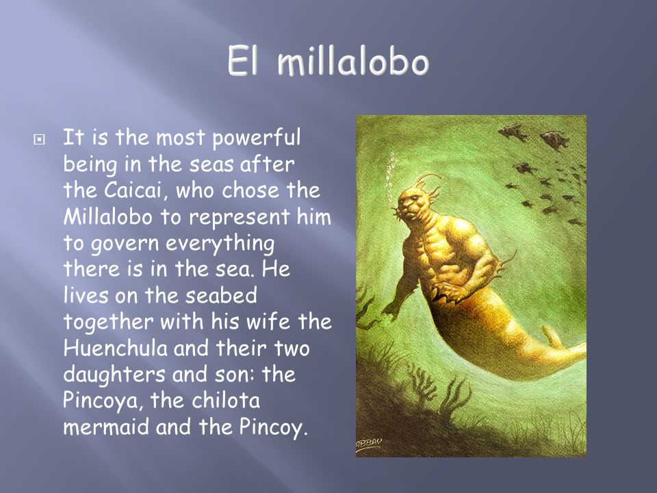  It is the most powerful being in the seas after the Caicai, who chose the Millalobo to represent him to govern everything there is in the sea. He li