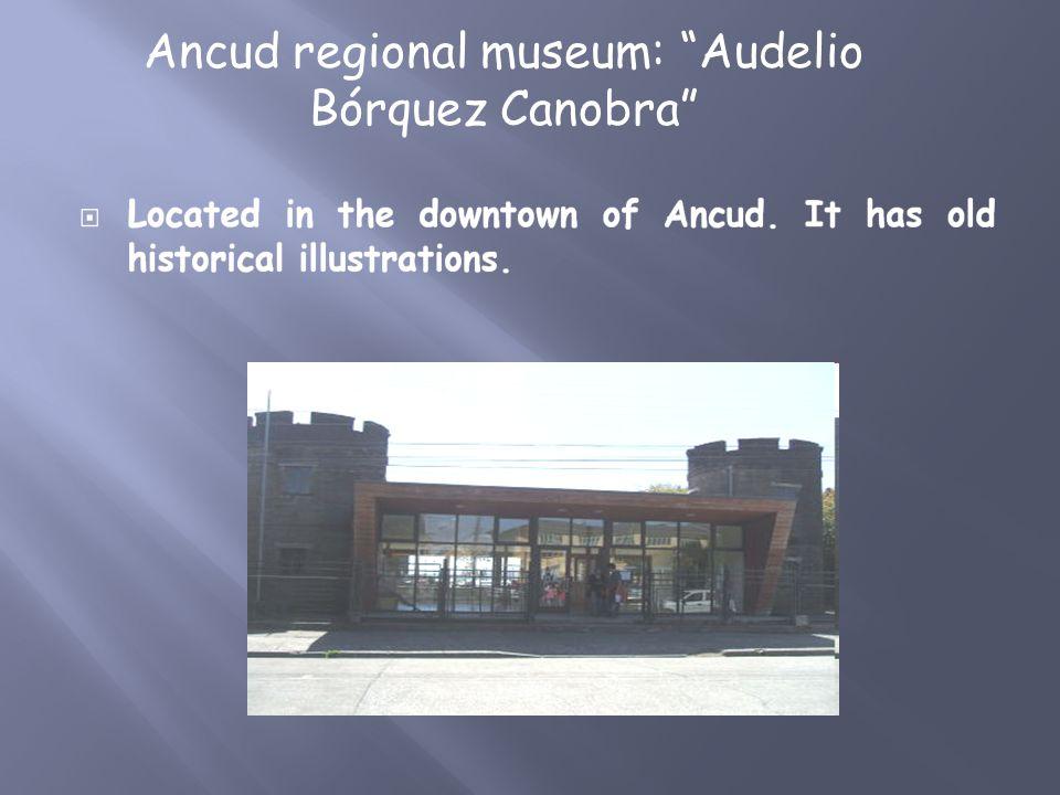 Ancud regional museum: Audelio Bórquez Canobra