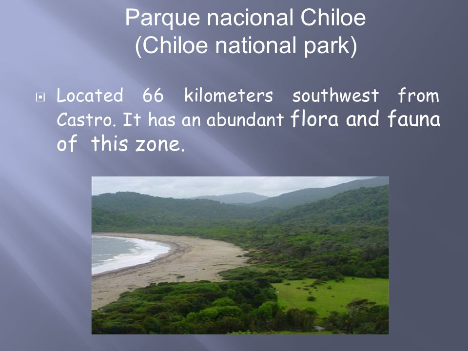 Located 66 kilometers southwest from Castro. It has an abundant flora and fauna of this zone. Parque nacional Chiloe (Chiloe national park)