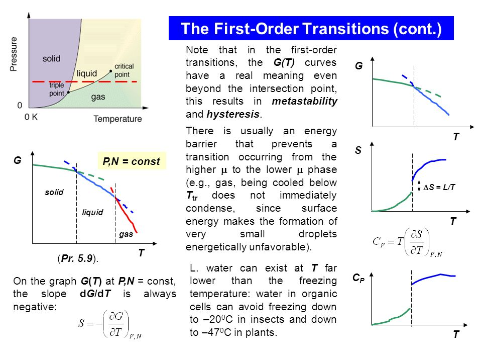 The First-Order Transitions (cont.) G T solid liquid gas P,N = const (Pr.