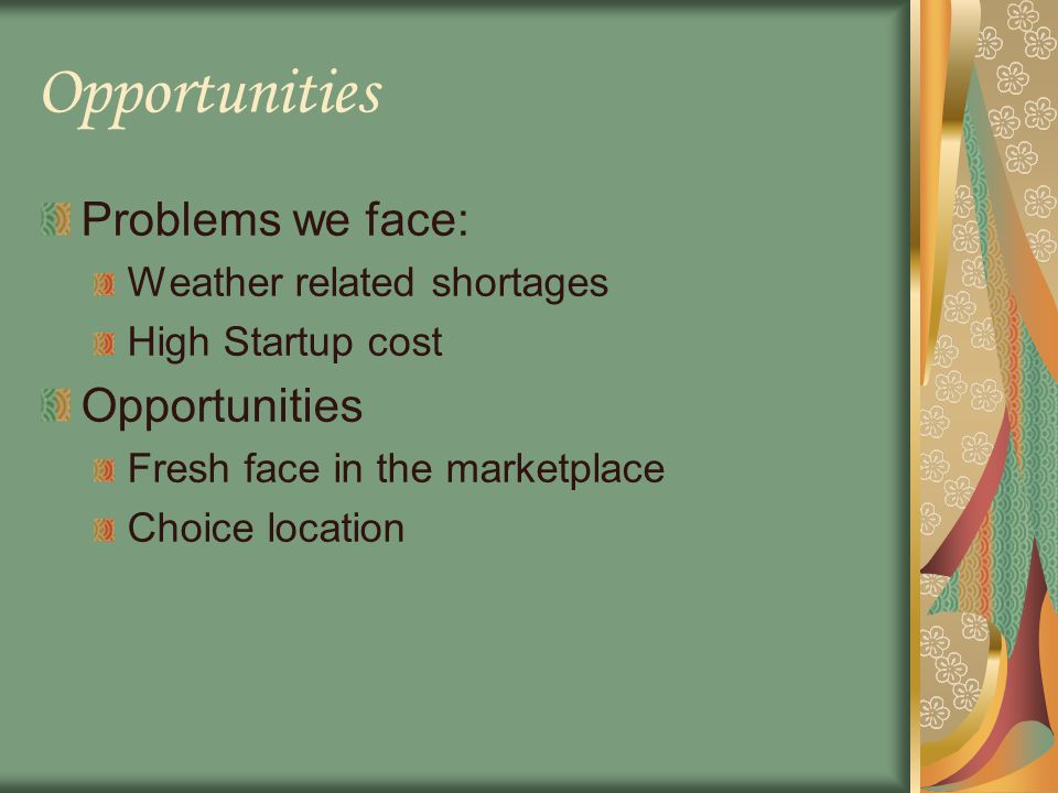 Opportunities Problems we face: Weather related shortages High Startup cost Opportunities Fresh face in the marketplace Choice location