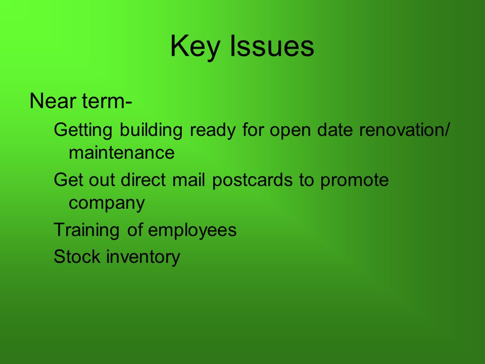 Key Issues Near term- Getting building ready for open date renovation/ maintenance Get out direct mail postcards to promote company Training of employees Stock inventory