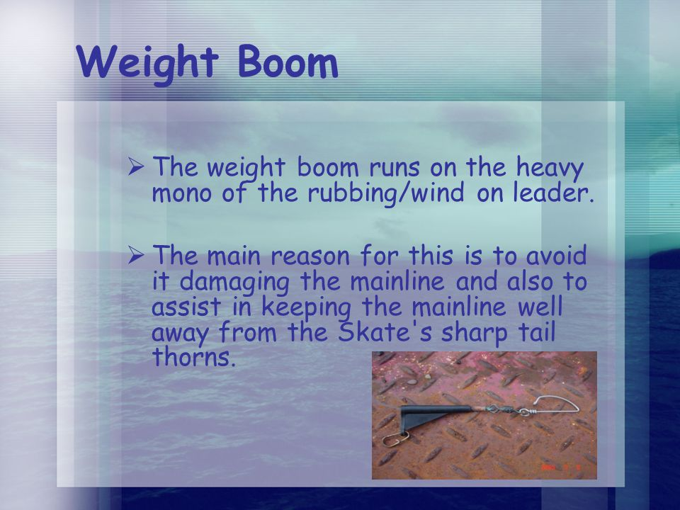 Weight Boom  The weight boom runs on the heavy mono of the rubbing/wind on leader.  The main reason for this is to avoid it damaging the mainline an