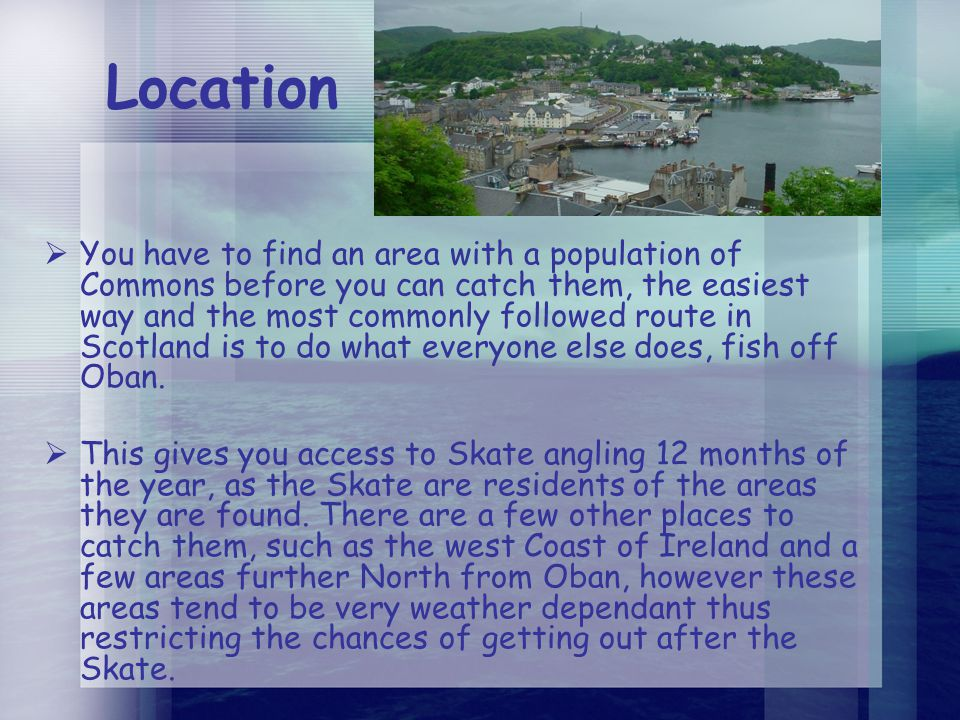 Location  You have to find an area with a population of Commons before you can catch them, the easiest way and the most commonly followed route in Scotland is to do what everyone else does, fish off Oban.
