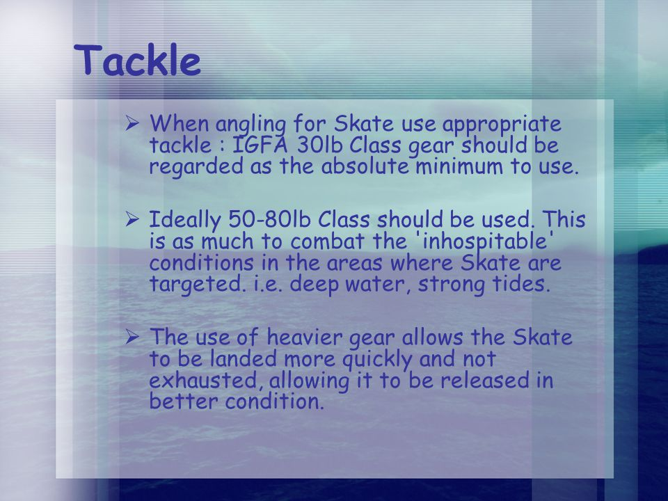 Tackle  When angling for Skate use appropriate tackle : IGFA 30lb Class gear should be regarded as the absolute minimum to use.