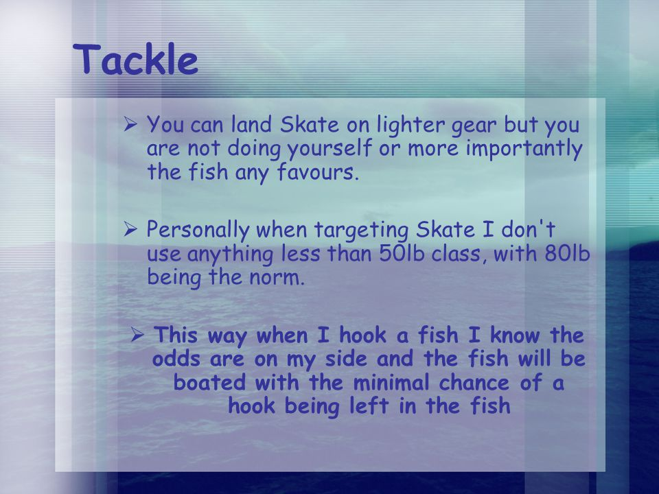 Tackle  You can land Skate on lighter gear but you are not doing yourself or more importantly the fish any favours.