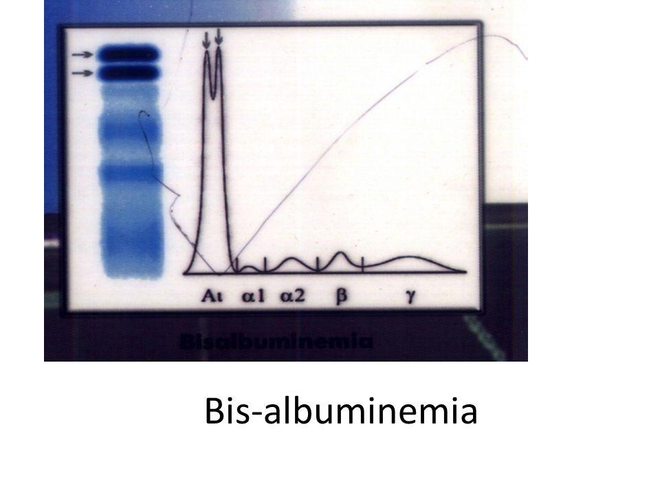 Bis-albuminemia