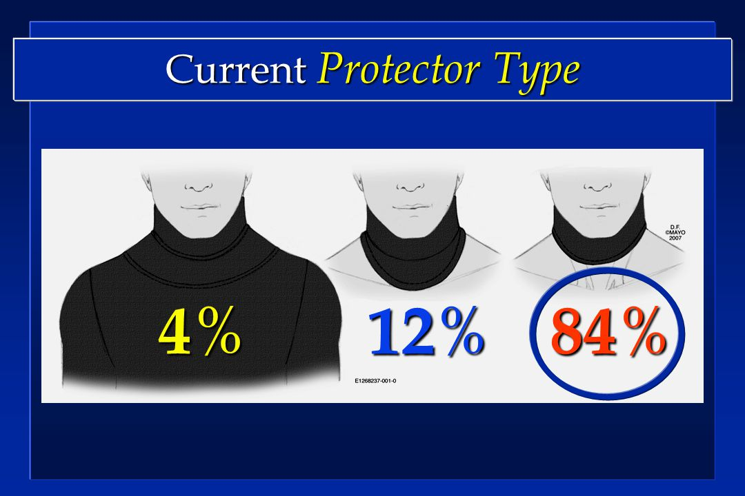 Current Protector Type 12 % 4%4%4%4% 84 %