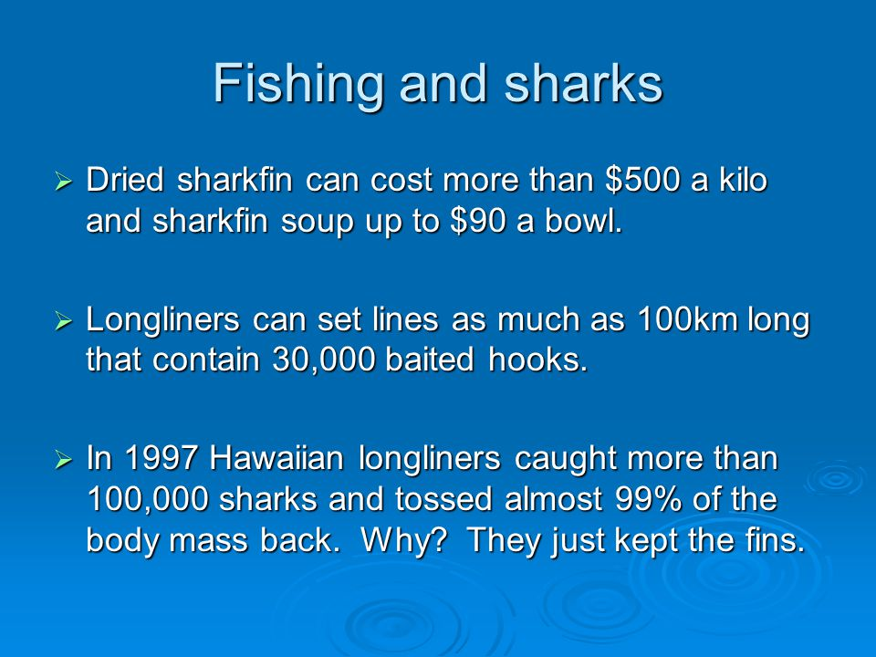 Fishing and sharks  Dried sharkfin can cost more than $500 a kilo and sharkfin soup up to $90 a bowl.