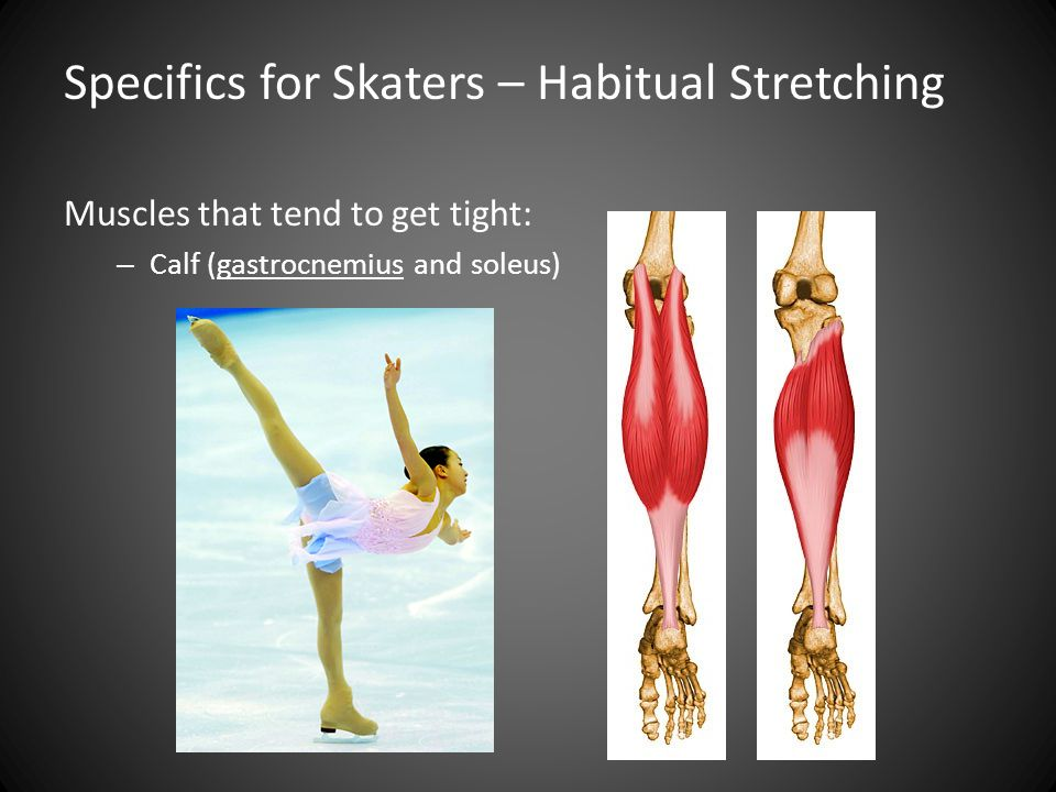 Muscles that tend to get tight: – Calf (gastrocnemius and soleus) Specifics for Skaters – Habitual Stretching