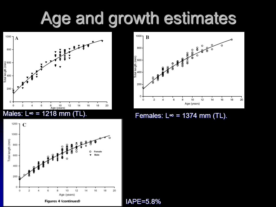 Age and growth estimates Males: L∞ = 1218 mm (TL). Females: L∞ = 1374 mm (TL). IAPE=5.8%
