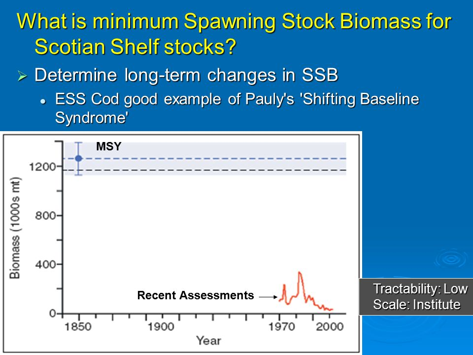 What is minimum Spawning Stock Biomass for Scotian Shelf stocks?  Determine long-term changes in SSB ESS Cod good example of Pauly's 'Shifting Baseli