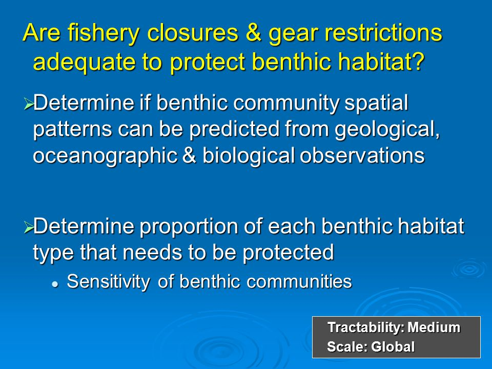 Are fishery closures & gear restrictions adequate to protect benthic habitat?  Determine if benthic community spatial patterns can be predicted from