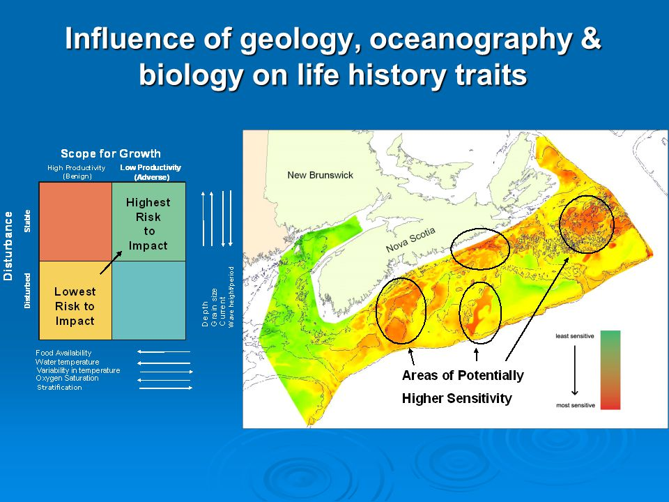 Influence of geology, oceanography & biology on life history traits