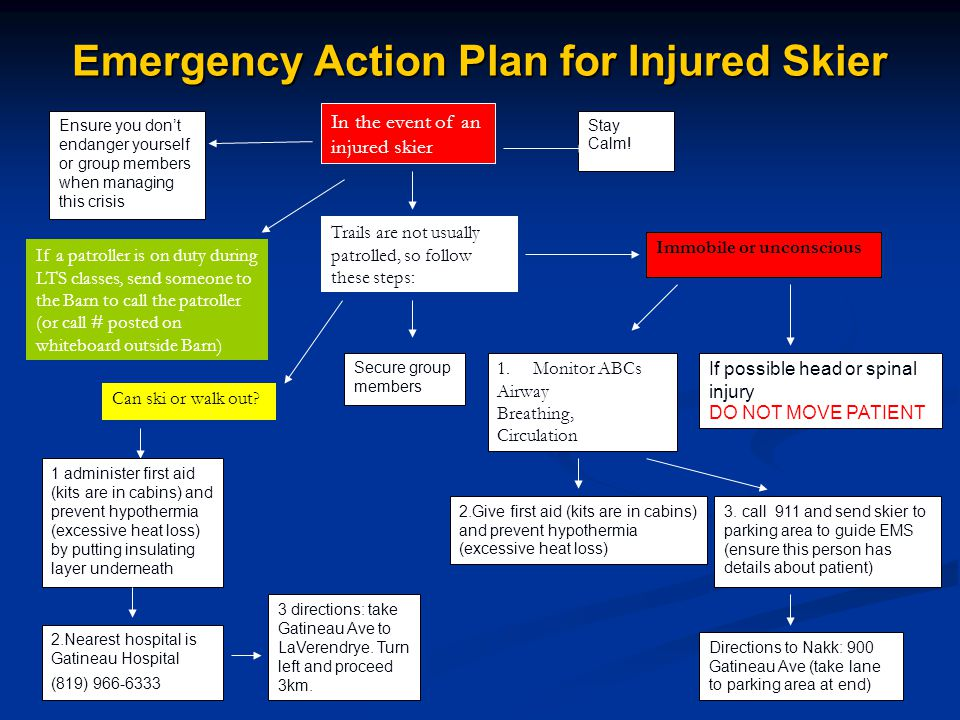 Emergency Action Plan for Injured Skier Stay Calm.