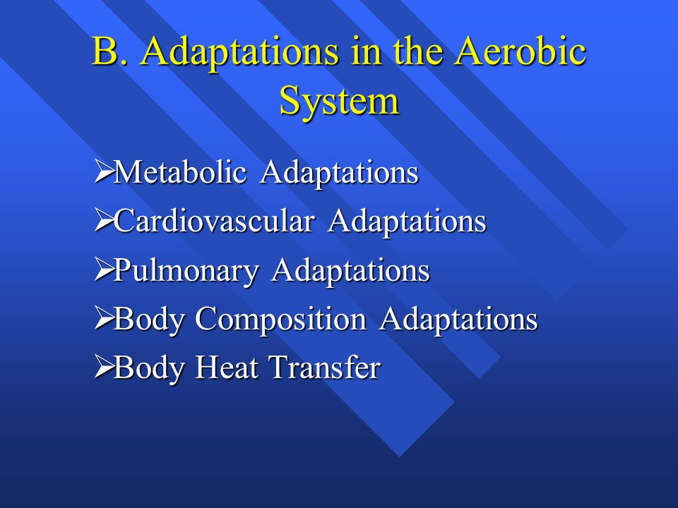 B. Adaptations in the Aerobic System  Metabolic Adaptations  Cardiovascular Adaptations  Pulmonary Adaptations  Body Composition Adaptations  Bod