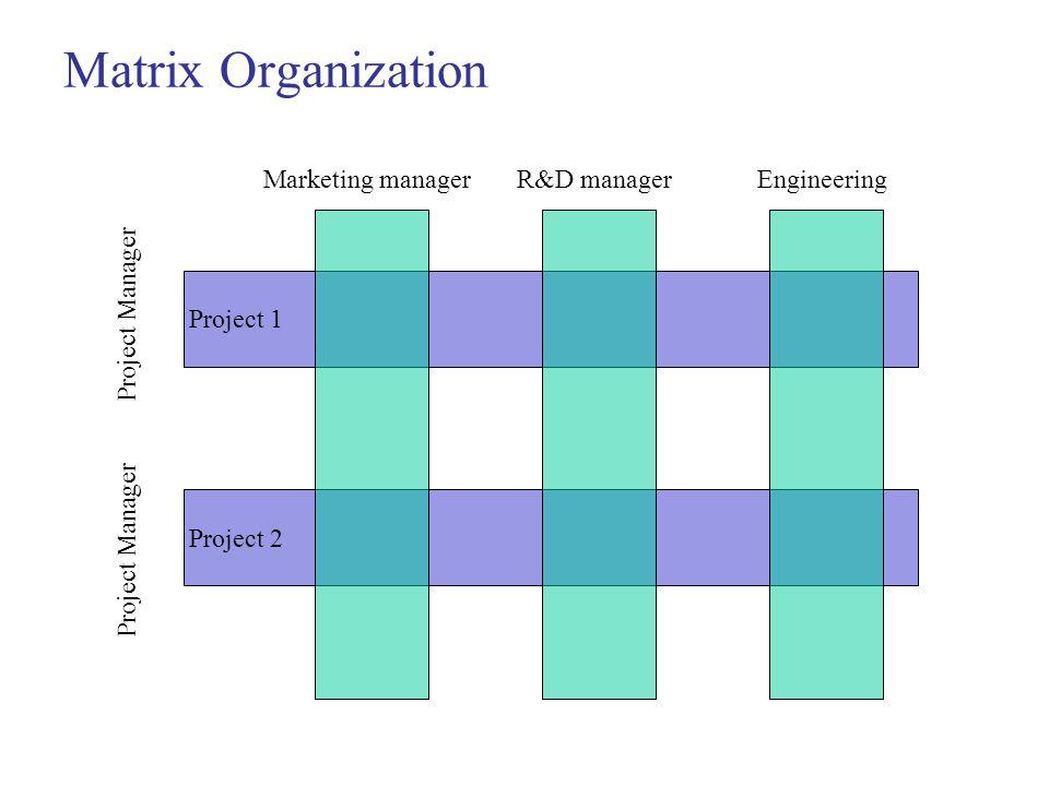 Matrix Organization Marketing managerR&D manager Project 1 Project 2 Engineering Project Manager