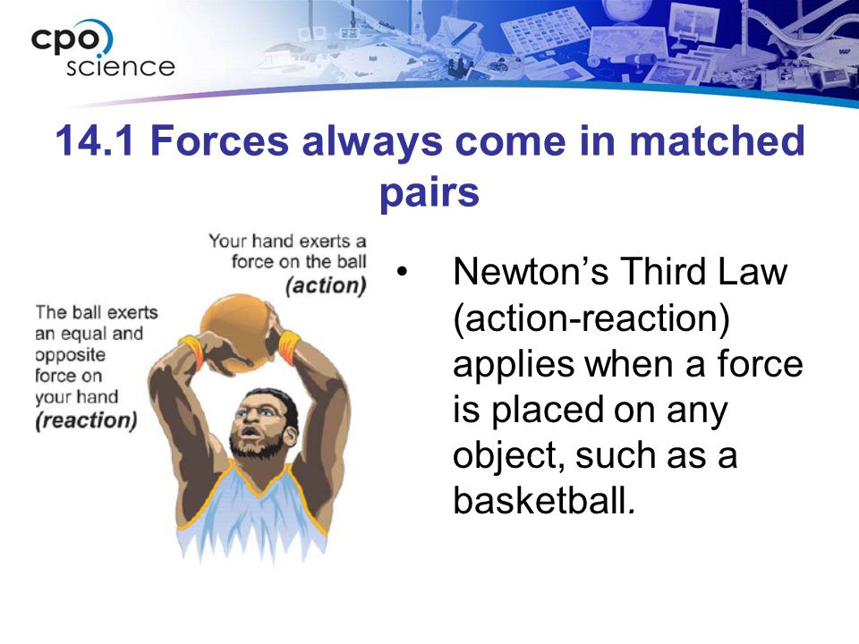 14.1 Forces always come in matched pairs Newton's Third Law (action-reaction) applies when a force is placed on any object, such as a basketball.