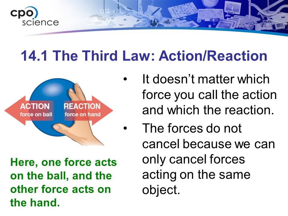 14.1 The Third Law: Action/Reaction It doesn't matter which force you call the action and which the reaction. The forces do not cancel because we can