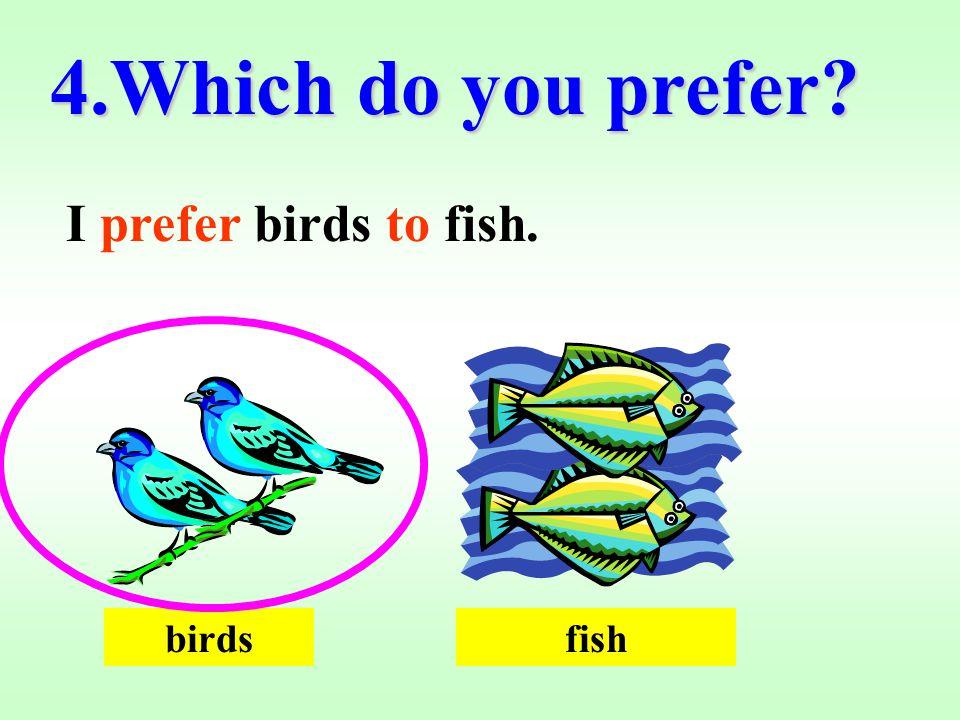 4.Which do you prefer? I prefer birds to fish. birdsfish