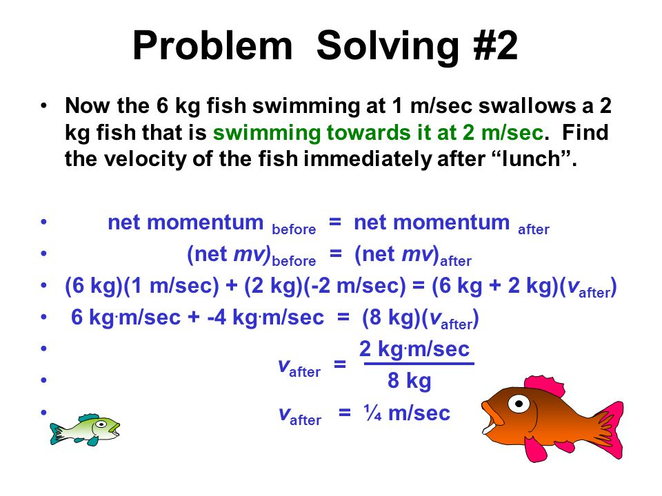 Problem Solving #1 A 6 kg fish swimming at 1 m/sec swallows a 2 kg fish that is at rest.