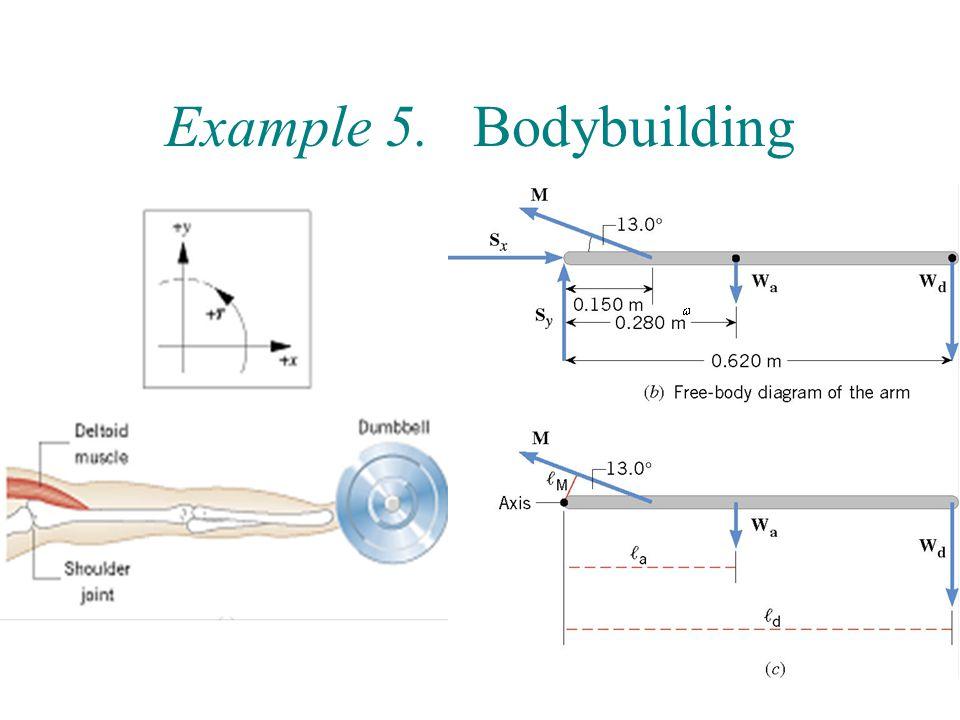 18 Example 5. Bodybuilding