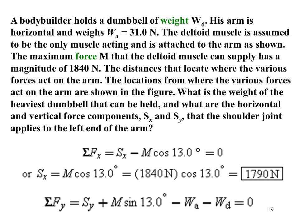 19 A bodybuilder holds a dumbbell of weight W d. His arm is horizontal and weighs W a = 31.0 N. The deltoid muscle is assumed to be the only muscle ac