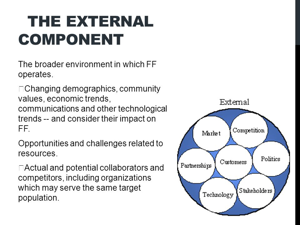 THE EXTERNAL COMPONENT The broader environment in which FF operates.