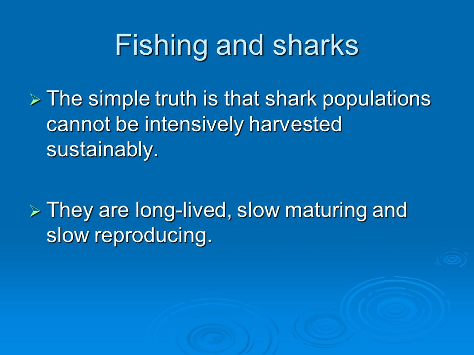 Fishing and sharks  The simple truth is that shark populations cannot be intensively harvested sustainably.  They are long-lived, slow maturing and