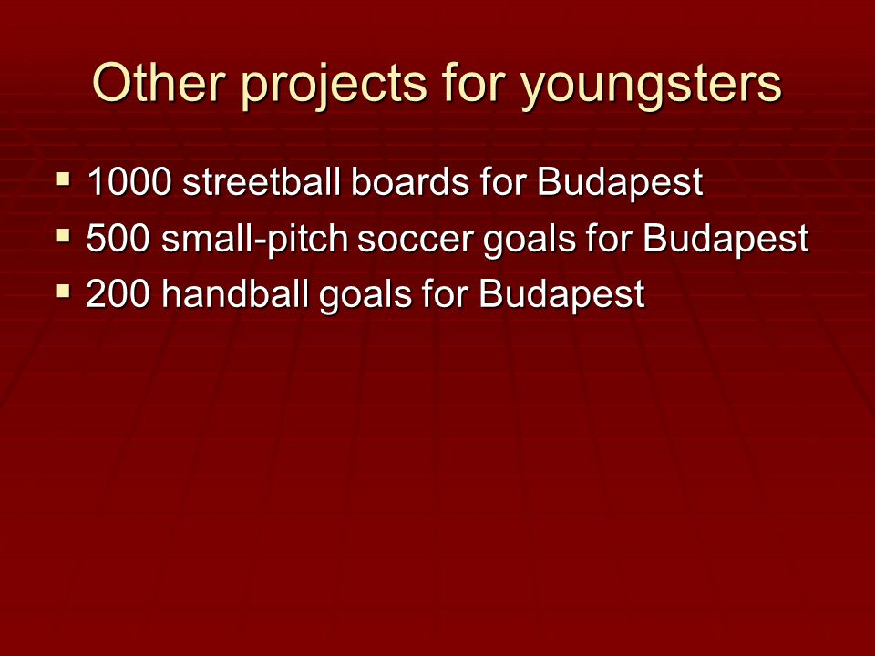Other projects for youngsters  1000 streetball boards for Budapest  500 small-pitch soccer goals for Budapest  200 handball goals for Budapest