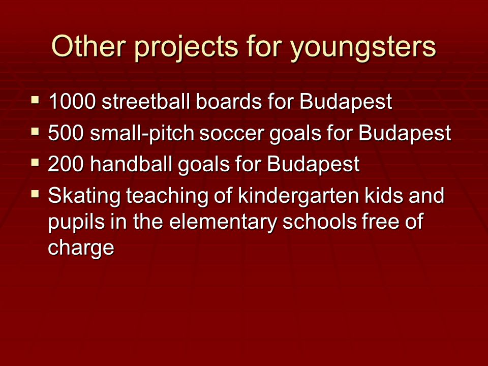 Other projects for youngsters  1000 streetball boards for Budapest  500 small-pitch soccer goals for Budapest  200 handball goals for Budapest  Skating teaching of kindergarten kids and pupils in the elementary schools free of charge