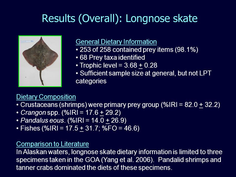 Results (Overall): Longnose skate General Dietary Information 253 of 258 contained prey items (98.1%) 68 Prey taxa identified Trophic level = 3.68 + 0.28 Sufficient sample size at general, but not LPT categories Dietary Composition Crustaceans (shrimps) were primary prey group (%IRI = 82.0 + 32.2) Crangon spp.