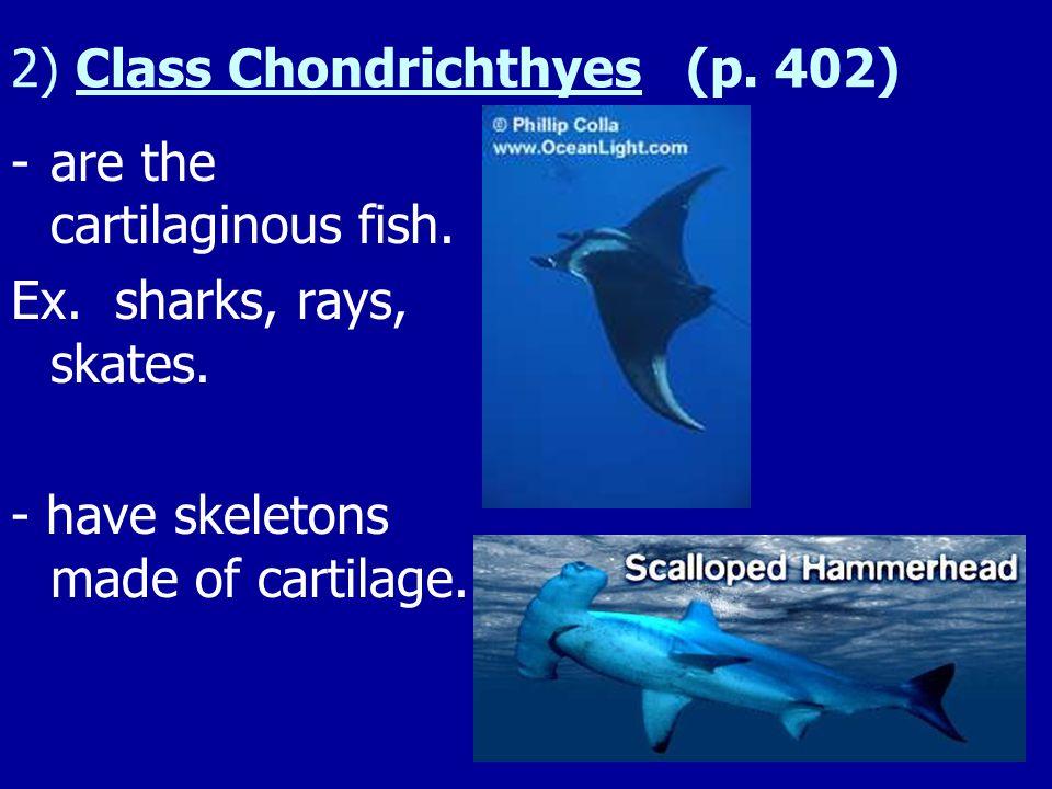 Ex. Hagfish (p. 402) - attacks dying or dead fish.
