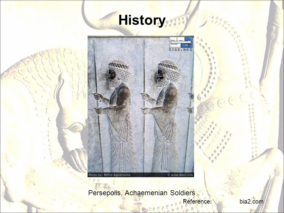 History Persepolis, Achaemenian Soldiers Reference: bia2.com