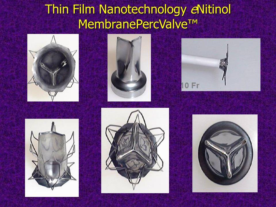 Thin Film Nanotechnology eNitinol MembranePercValve™