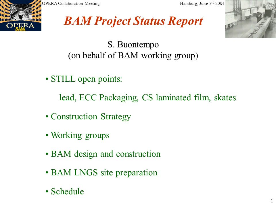 1 STILL open points: lead, ECC Packaging, CS laminated film, skates Construction Strategy Working groups BAM design and construction BAM LNGS site preparation Schedule BAM Project Status Report S.