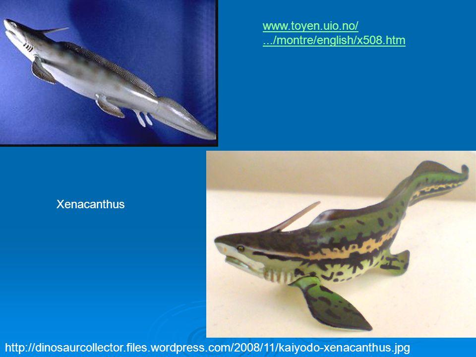 Xenacanthus http://dinosaurcollector.files.wordpress.com/2008/11/kaiyodo-xenacanthus.jpg www.toyen.uio.no/.../montre/english/x508.htm