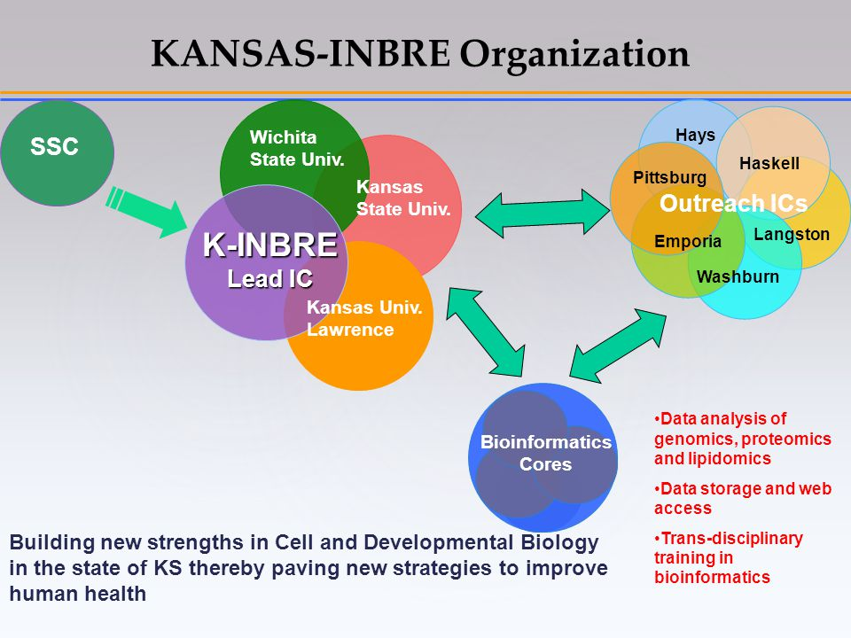 KANSAS-INBRE Organization K-INBRE Lead IC Kansas Univ.