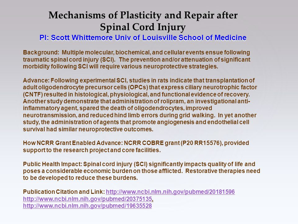Mechanisms of Plasticity and Repair after Spinal Cord Injury PI: Scott Whittemore Univ of Louisville School of Medicine Background: Multiple molecular, biochemical, and cellular events ensue following traumatic spinal cord injury (SCI).