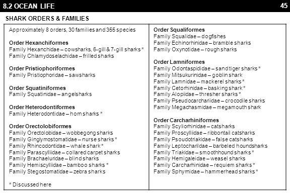 45 8.2 OCEAN LIFE SHARK ORDERS & FAMILIES Approximately 8 orders, 30 families and 355 species Order Hexanchiformes Family Hexanchidae – cowsharks, 6-gill & 7-gill sharks * Family Chlamydoselachidae – frilled sharks Order Pristiophoriformes Family Pristiophoridae – sawsharks Order Squatiniformes Family Squatinidae – angelsharks Order Heterodontiformes Family Heterodontidae – horn sharks * Order Orectolobiformes Family Orectolobidae – wobbegong sharks Family Ginglymostomatidae – nurse sharks * Family Rhincodontidae – whale shark * Family Parascylliidae – collared carpet sharks Family Brachaeluridae – blind sharks Family Hemiscylliidae – bamboo sharks * Family Stegostomatidae – zebra sharks * Discussed here Order Squaliformes Family Squalidae – dogfishes Family Echinorhinidae – bramble sharks Family Oxynotidae – rough sharks Order Lamniformes Family Odontaspididae – sand tiger sharks * Family Mitsukurinidae – goblin shark Family Lamnidae – mackerel sharks * Family Cetorhinidae – basking shark * Family Alopiidae – thresher sharks * Family Pseudocarchariidae – crocodile sharks Family Megachasmidae – megamouth shark Order Carcharhiniformes Family Scyliorhinidae – catsharks Family Proscylliidae – ribbontail catsharks Family Psoudotriakidae – false catsharks Family Leptocharildae – barbeled houndsharks Family Triakidae – smoothhound sharks * Family Hemigaleidae – weasel sharks Family Carcharhinidae – requiem sharks * Family Sphyrnidae – hammerhead sharks *