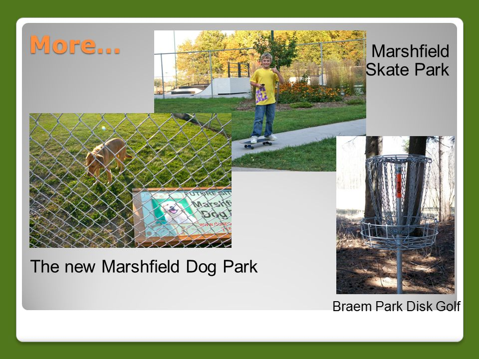 More… Marshfield Skate Park Braem Park Disk Golf The new Marshfield Dog Park