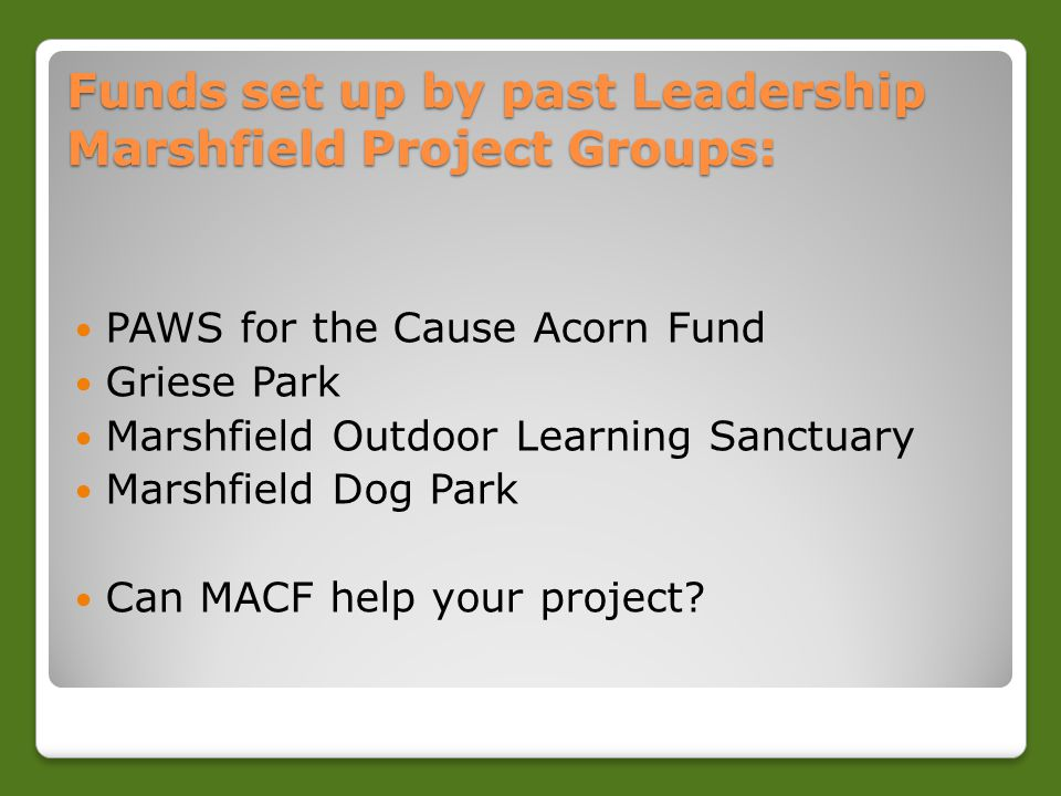 Funds set up by past Leadership Marshfield Project Groups: PAWS for the Cause Acorn Fund Griese Park Marshfield Outdoor Learning Sanctuary Marshfield Dog Park Can MACF help your project