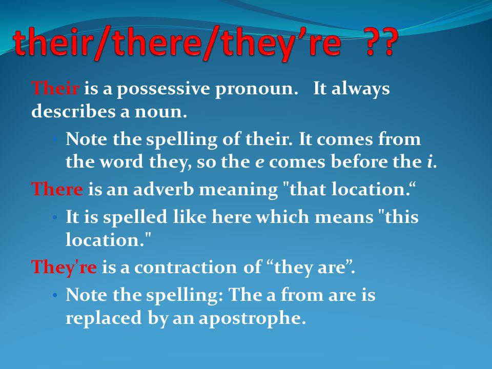 Their is a possessive pronoun. It always describes a noun.