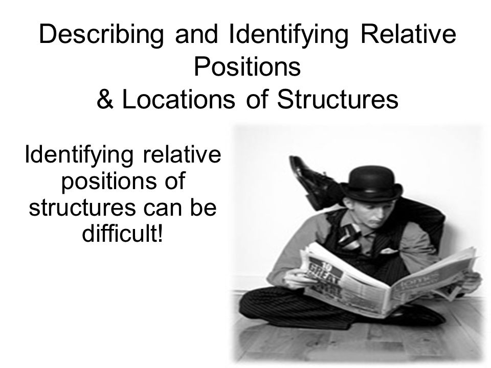 Describing and Identifying Relative Positions & Locations of Structures Identifying relative positions of structures can be difficult!