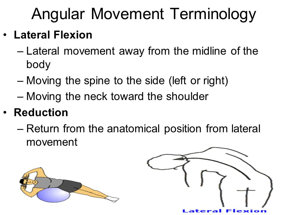 Angular Movement Terminology Lateral Flexion –Lateral movement away from the midline of the body –Moving the spine to the side (left or right) –Moving