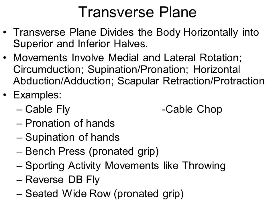 Transverse Plane Transverse Plane Divides the Body Horizontally into Superior and Inferior Halves. Movements Involve Medial and Lateral Rotation; Circ