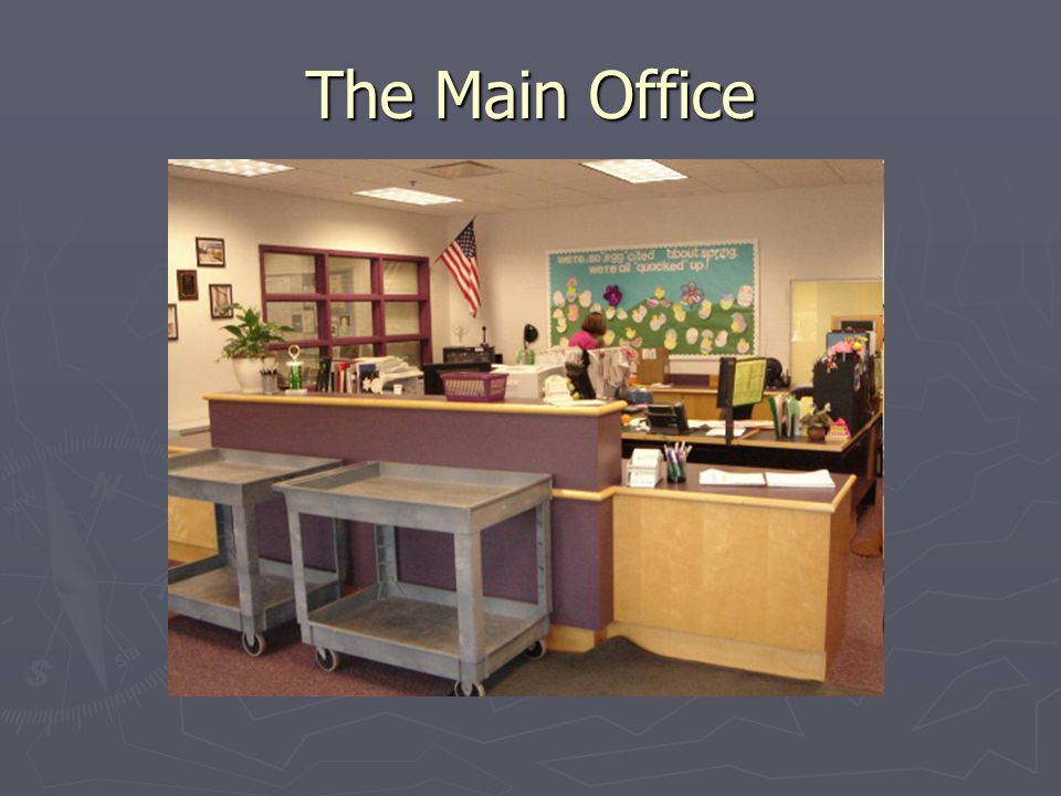 The Main Office